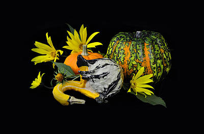 Pleasure Mixed Media -  Pumpkins And Flowers In Black by Gynt