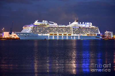 Photograph - Quantum Of The Seas At Night by Terri Waters