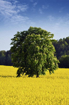 Rural Scenes Digital Art -  Rapeseed Field  by Aged Pixel