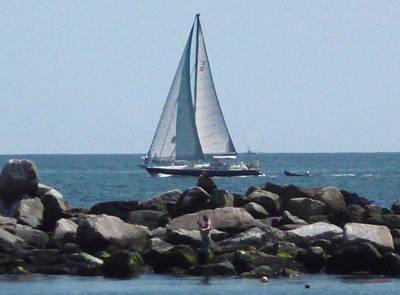 Photograph -  Rhode Island Coastline by Margie Avellino