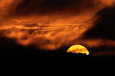 Photograph -  Setting Sun by Gavin Macrae