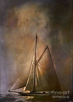 Shamrock II -1901  Original by Andrzej Szczerski