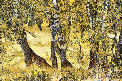 Silver Birch Art Print by Odon Czintos