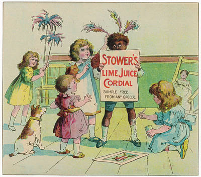 Lime Drawing -  Stower's Lime Juice Cordial - Sample by Mary Evans Picture Library