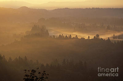 Guns Arms And Weapons -  Sunrise overlooking valley with trees and low fog and fields Gr by Jim Corwin