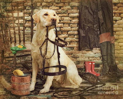 Labrador Digital Art -  Tack Cleaning Day by Trudi Simmonds