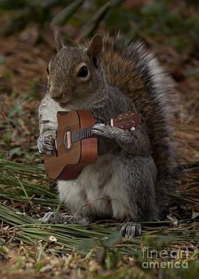 Photograph -  The Guitarist  by Sandra Clark