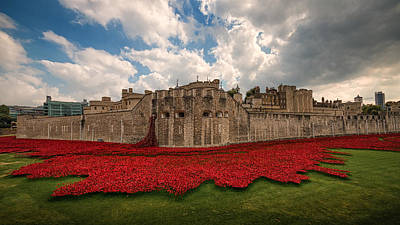 Installation Art Photograph -   Tower Of London Remembers.  by Ian Hufton