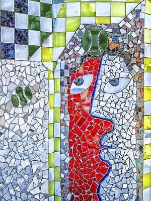 Photograph -  Two Faces Mosaics by Jo Ann Tomaselli