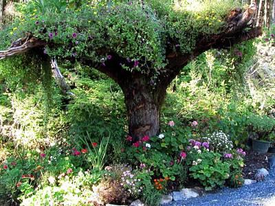 Fine Dining -  Upside Down Tree by Jennifer Wheatley Wolf