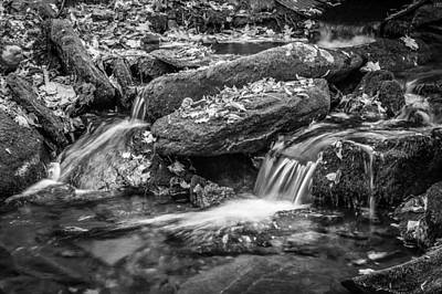 Photograph -  Waterfall Great Smoky Mountains Painted Bw    by Rich Franco
