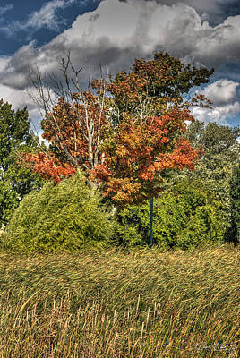 Fall Photograph - 01 Autumn Breeze 2014 by Michael Frank Jr