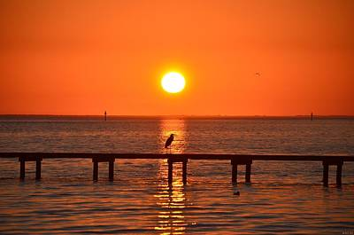 Photograph - 0105 Sunset On Santa Rosa Sound With Great Blue Heron Silhouette by Jeff at JSJ Photography