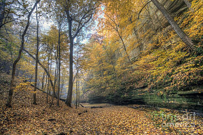 Starved Rock Wall Art - Photograph - 0131 Tonty Canyon by Steve Sturgill