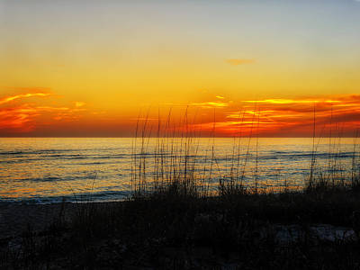 Southwest Florida Sunset Photograph - Sunset And Sea Oats On The Florida Gulf Coast by Frank J Benz