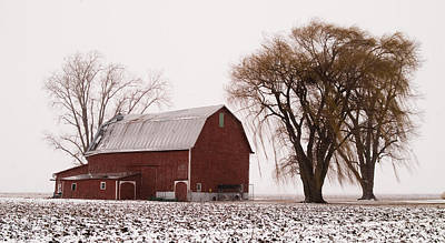 020213-57   Prairie Winter IIi Print by Mike Davis