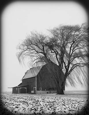 020213-67   Prairie Winter II Art Print by Mike Davis