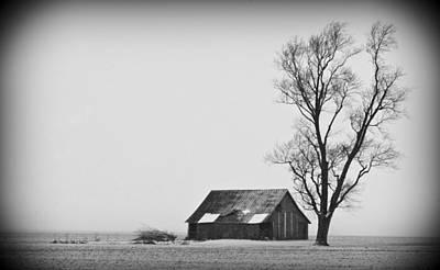 020213-73   Prairie Winter Art Print by Mike Davis
