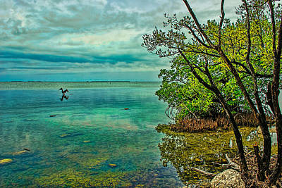 Photograph - 0226-key-largo by Lewis Mann