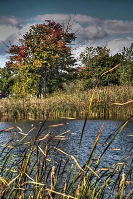 Fall Photograph - 04 03 Autumn Breeze 2014 by Michael Frank Jr