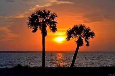 Photograph - 0602 Pair Of Palms At Sunrise by Jeff at JSJ Photography