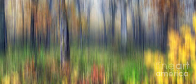 Starved Rock Wall Art - Photograph - 0904 Fall Abstract - Starved Rock by Steve Sturgill