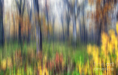 Starved Rock Wall Art - Photograph - 0903 Fall Abstract - Starved Rock by Steve Sturgill
