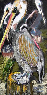 090914 Pelicans Art Print by Garland Oldham