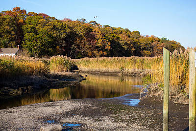 Fall Foliage At Nissequogue River Art Print