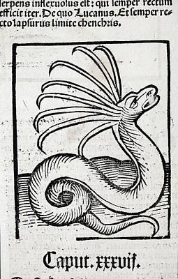 1491 Cerastes Lure Snake Hortus Sanitatis Art Print