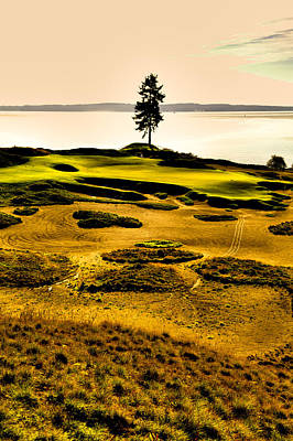 Us Open Photograph - #15 At Chambers Bay Golf Course - Location Of The 2015 U.s. Open Tournament by David Patterson
