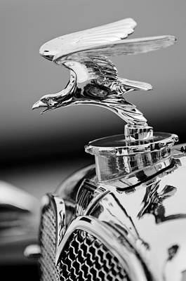 Photograph - 1932 Alvis Hood Ornament by Jill Reger