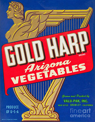 Crate Drawing - 1940s Usa Vegetable Crate Label by Shawn Hempel