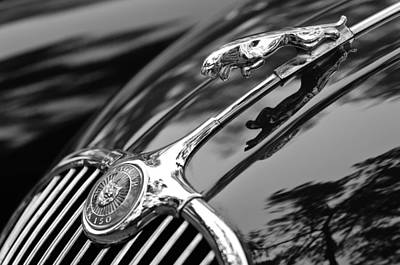 Antique Car Photograph - 1955 Jaguar Xk 150 Hood Ornament by Jill Reger