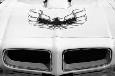 Firebird Photograph - 1975 Pontiac Trans Am Firebird Hood Painting by Jill Reger