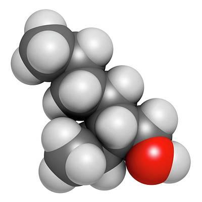 2-ethylhexanol Molecule Print by Molekuul