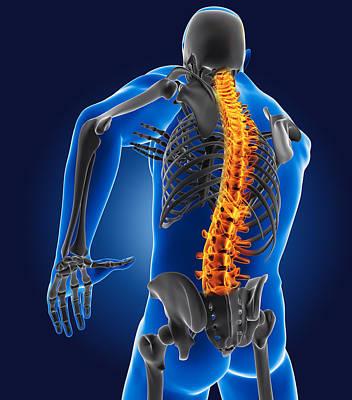 3d Medical Man With Skeleton Original