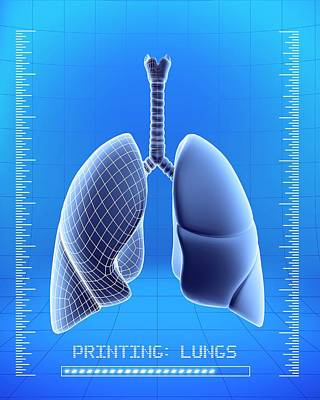 3d Printing Of Human Lungs Art Print by Alfred Pasieka