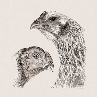 Chickens Wall Art - Digital Art - 51. Game Hens by Sigrid Van Dort