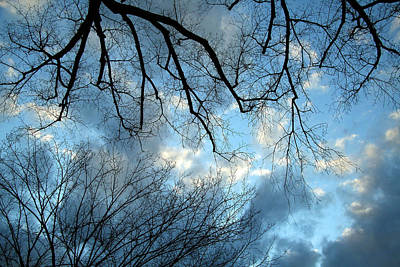 Photograph - A Conflicted Sky by Cora Wandel