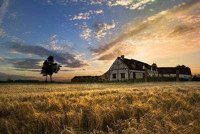 Chartres Photograph - A Golden Evening by Debra and Dave Vanderlaan