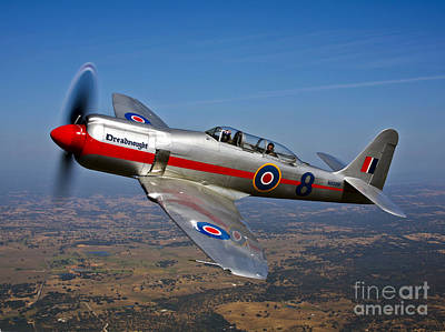 Fury Photograph - A Hawker Sea Fury T.mk.20 Dreadnought by Scott Germain