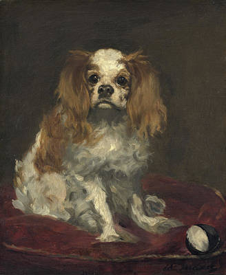 Painting - A King Charles Spaniel by Celestial Images