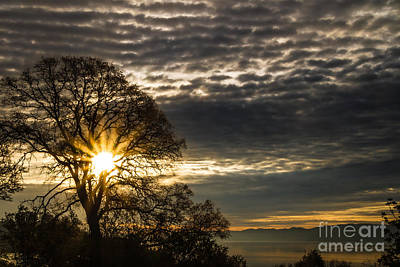 Clearlake Photograph - A New Day by Mitch Shindelbower