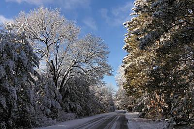 Photograph - A Snowy Lane by Leda Robertson