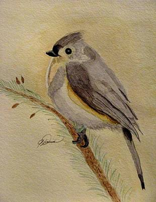 Titmouse Painting - A Tufted Titmouse by Angela Davies