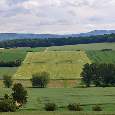 Photograph - A View Over Fields by Jouko Lehto