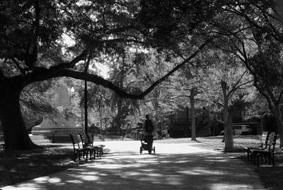 Photograph - A Walk In The Park by Shelley Bain