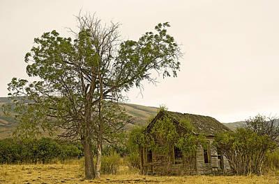 Overruns Photograph - Abandoned  by Nick  Boren