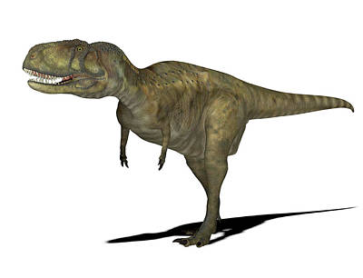 Paleozoology Photograph - Abelisaurus Dinosaur by Friedrich Saurer